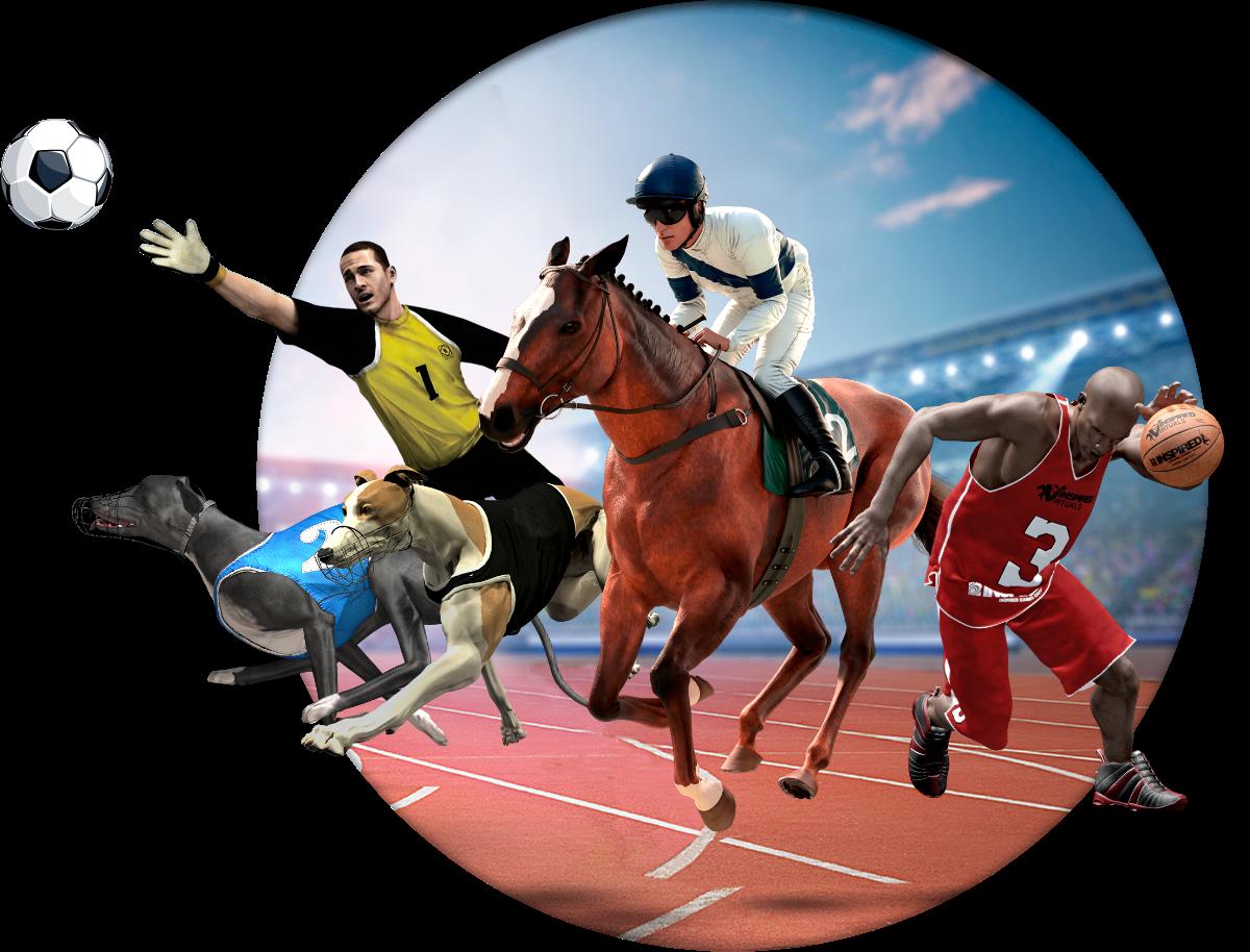 Virtual Sport Horsing
